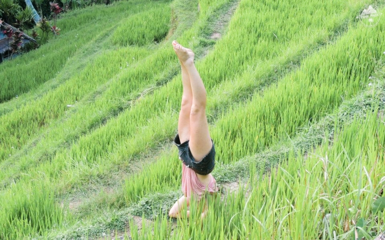bali-yoga-teaching-laurie-pink-pack-5