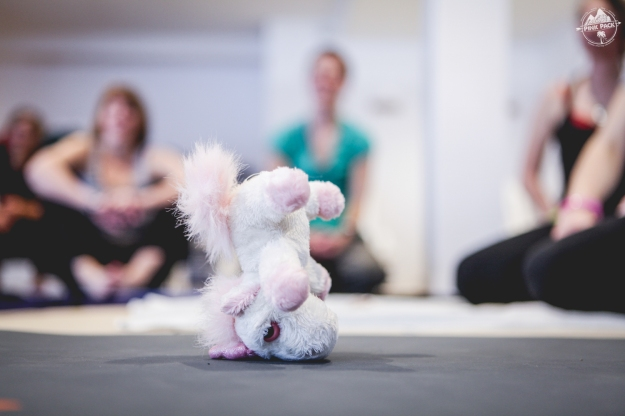 pink-pack-winter-session-mars15-jour1-yoga-22