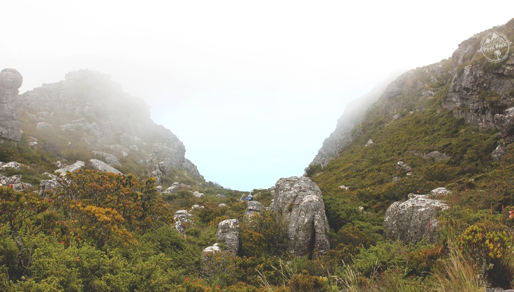 pink-pack_travel-diary_cape-town_table-mountain_6