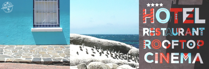 pink-pack_travel-diary_cape-town_pinguin-bo-kaap_29