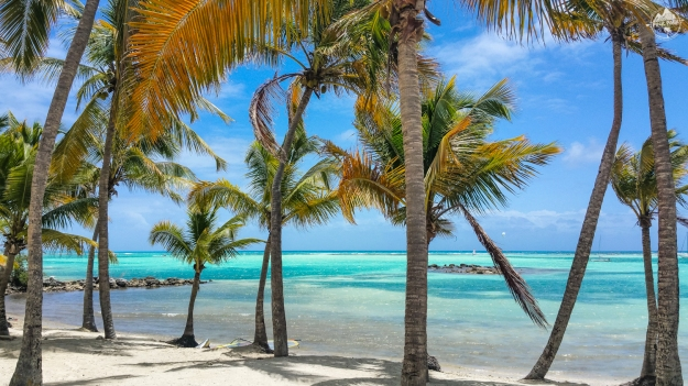 les_salines_guadeloupe_pink_pack_travel-edit