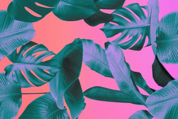 pink-pack-tropical-vibes-inspiration6