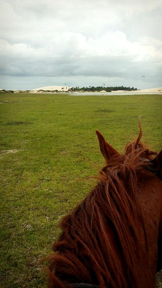 kitesurf-jeri-cheval2